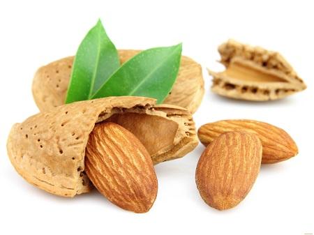 خواص بادام, فواید بادام ,خاصیت بادام, عکس بادام, درخت بادام, مغز بادام ,مضرات بادام