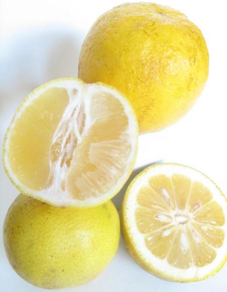 لیمو شیرین , خواص لیمو شیرین , فواید لیمو شیرین